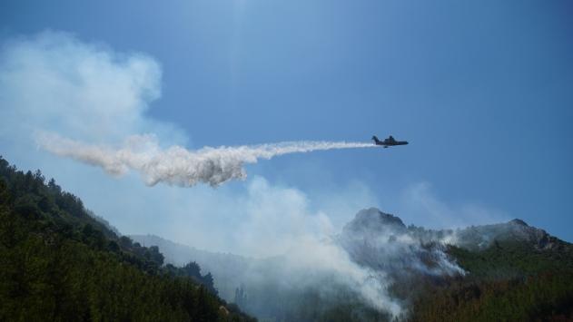 Antalyadaki yangında 3 hektar orman alanı zarar gördü