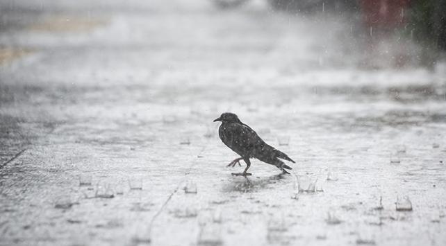 Meteorolojiden Vana sağanak uyarısı