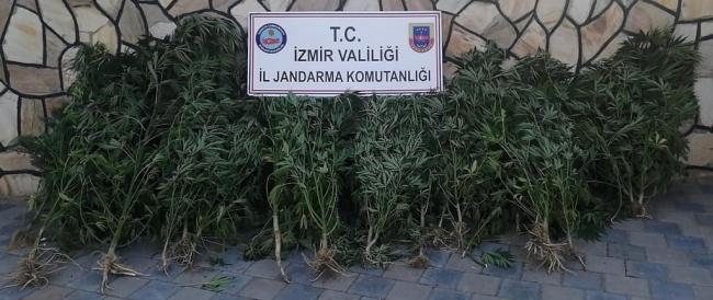 İzmirde uyuşturucu operasyonunda 2 şüpheli yakalandı