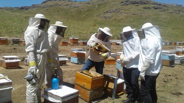 Genç arıcı 2 bin 900 rakımda organik bal üretiyor