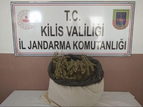 Kiliste uyuşturucu operasyonunda 5 kilogram esrar ele geçirildi