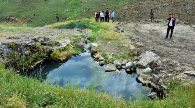 Muşta tespit edilen sıcak su kaynakları ekonomiye kazandırılacak