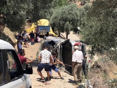 Aydında kamyonet zeytin bahçesine devrildi: 2 yaralı