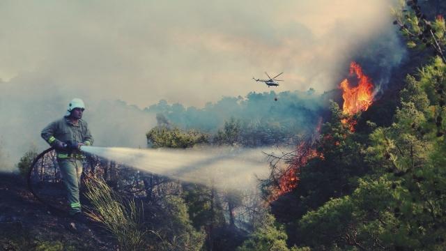 2020'nin ilk 6 ayında 836 orman yangını çıktı