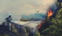 Orman yangınlarında her yıl binlerce hektar alan kül oluyor