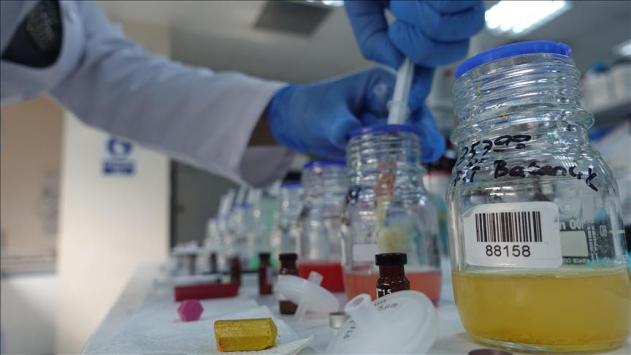 Kimya sektörünün ihracatı yüzde 10,2 arttı