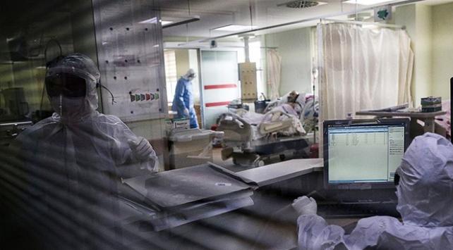 Türkiyede koronavirüsü atlatan kişi sayısı 177 bine yaklaştı