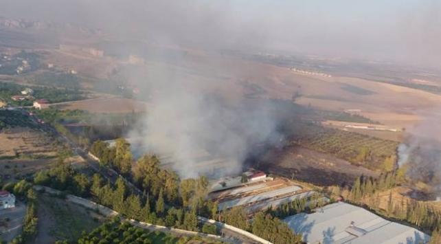 Hatayda çiftlik yangını