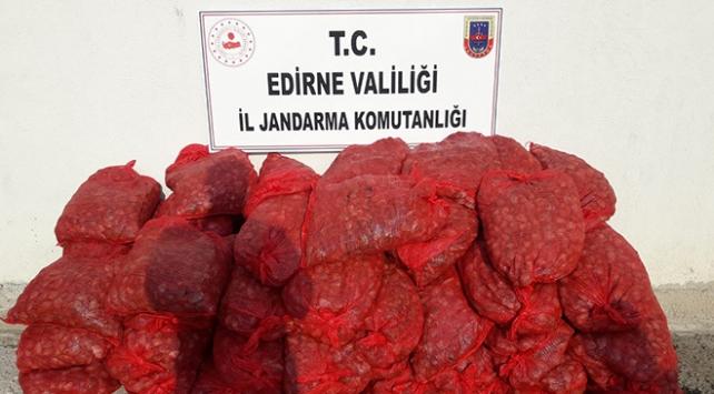 Edirnede kaçak avlanmış 1 ton midye ele geçirildi