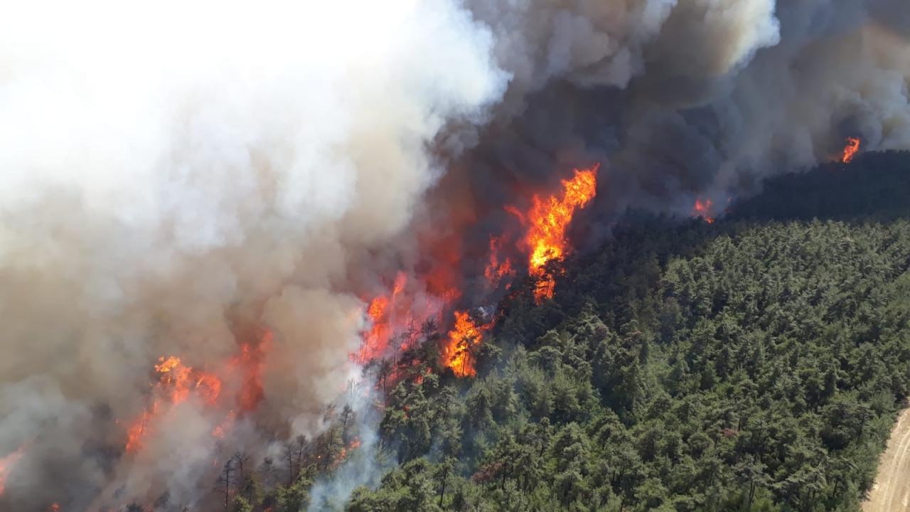 Çanakkale yangından TRT Haber'e özel görüntüler