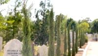 Karaman'da Kırmahalle Şehir Mezarlığına 500 kara selvi ağacı dikildi
