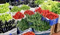 Rusya'ya 6 ayda 507 bin 143 ton yaş meyve sebze satıldı
