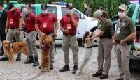 Çevre, Doğa, Hayvan Koruma Şube Müdürlüğü ekipleri göreve başlıyor