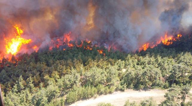 Türkiyedeki orman yangınlarının büyük kısmı insan kaynaklı