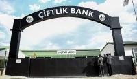 Çiftlik Bank firarisinin 'tutuklanmama güvencesi' talebi reddedildi