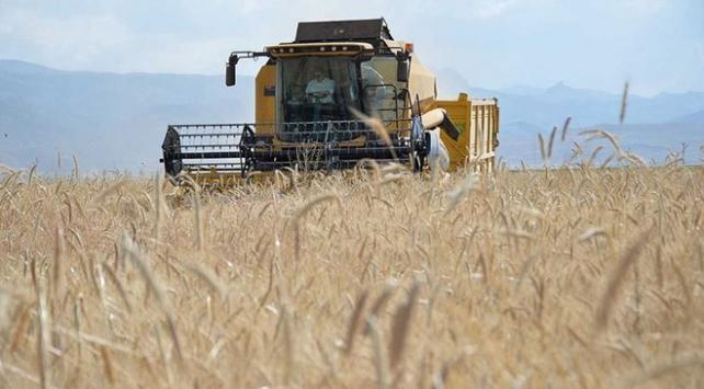 Türkiyede tarımsal hasılada Avrupada zirvede
