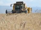 Türkiye'de tarımsal hasılada Avrupa'da zirvede