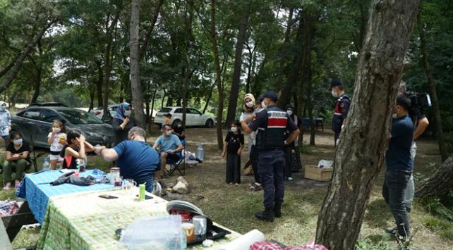 İstanbulda piknik alanlarında denetim