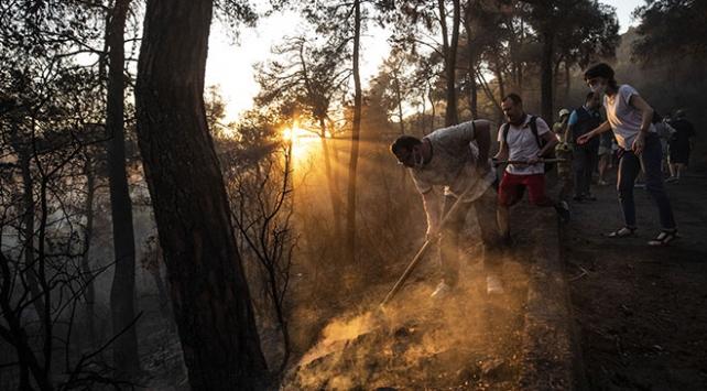 Heybeliadadaki orman yangınıyla ilgili 1 şüpheli tutuklandı
