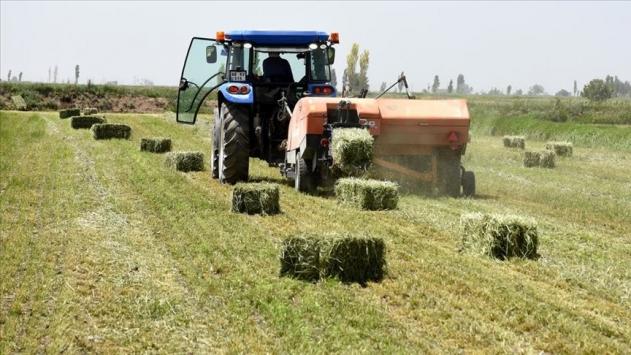 Tarım Kredi Yem kapasite artımı için yatırımlara devam ediyor
