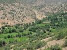 Hakkari'de terörden temizlenen topraklar 25 yıl sonra tohumla buluştu