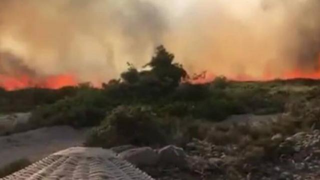 Alaçatı'da makilik alanda yangın