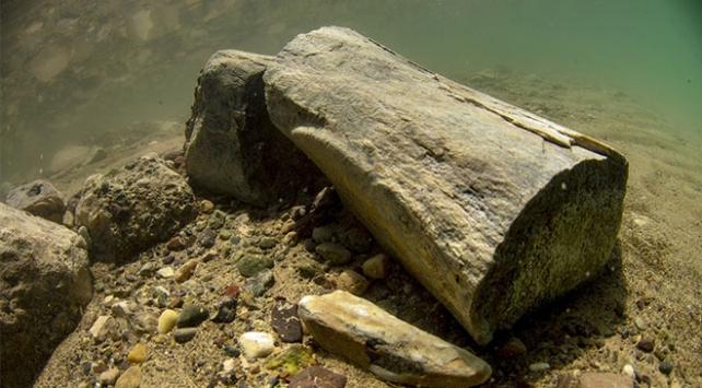 Dünyada bir ilk: 7,5 milyon yıllık fosil su altında görüntülendi