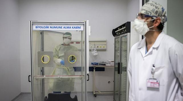 Türkiyede 203 bin kişi koronavirüsü yendi