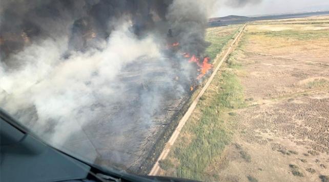 İzmirde sazlık alanda yangın