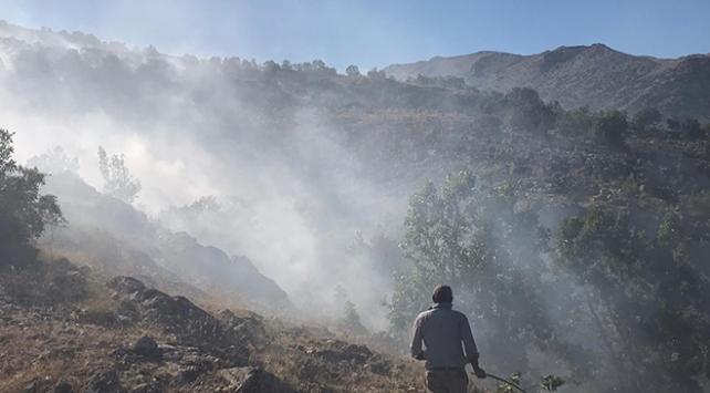 Malatya ve Tekirdağda orman yangını