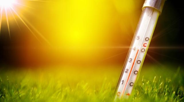 Dünya Meteoroloji Örgütünden sıcak hava dalgası uyarısı