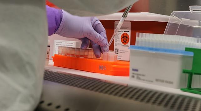 Dünyada koronavirüse yakalananların sayısı 16 milyonu geçti