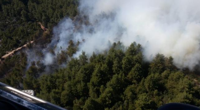 Burdurda ormanlık alanda yangın
