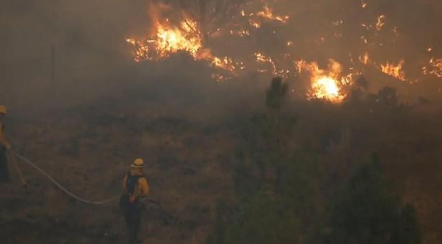 ABDde çalı yangınları devam ediyor