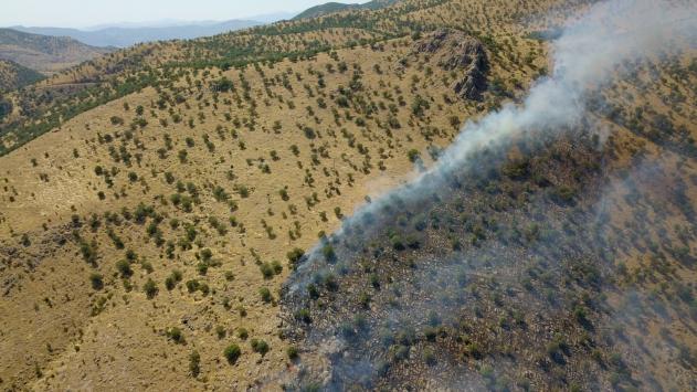 Siirtin Baykan ilçesinde çıkan orman yangını kontrol altına alındı