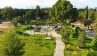 Binlerce bitki türü Dokuma Botanik Park'ta sergilenecek