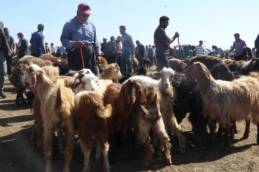 Doğu Anadoludaki hayvan pazarları en hareketli günlerini yaşıyor