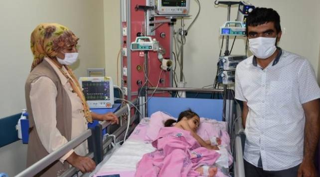 Arı sokması nedeniyle yoğun bakıma alınan Rabia hayata tutundu