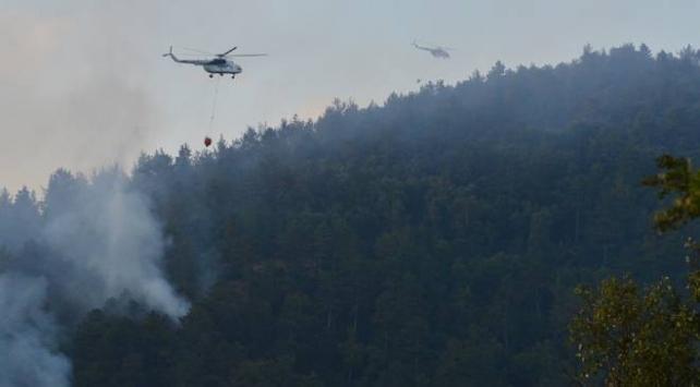 Çanakkaledeki orman yangını kontrol altına alındı