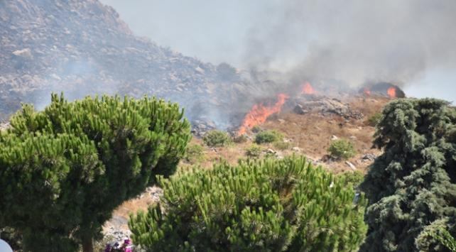 Bodrumda makilik alanda yangın