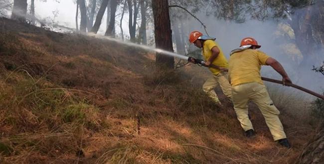 Pakdemirliden orman yangını paylaşımı: Dün gece rahat uyudunuz mu?