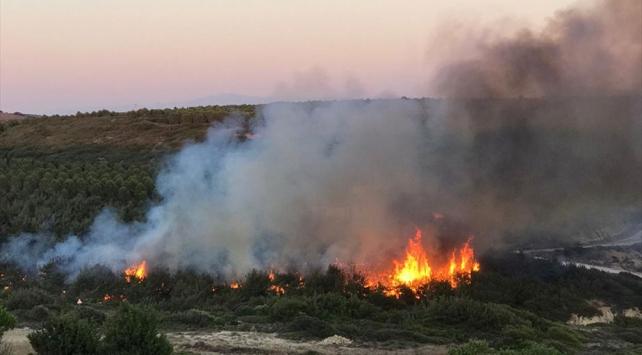 Bozcaadada çıkan yangında 4 hektarlık alan zarar gördü