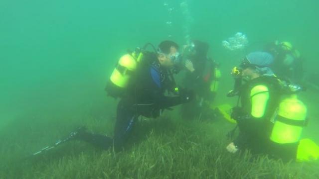 Su altı arkeolojisinde görev alan personele eğitim veriliyor