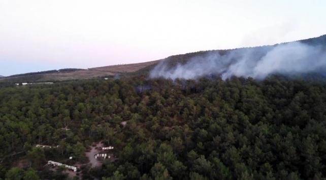 İstanbuldaki orman yangını büyümeden söndürüldü
