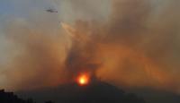 Aydın'da dün kontrol altına alınan yangın yeniden başladı