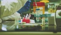 Bilim Kurulu Üyesi Taşova: Aşıdaki koruyuculuk süresi ve seviyesi önemli