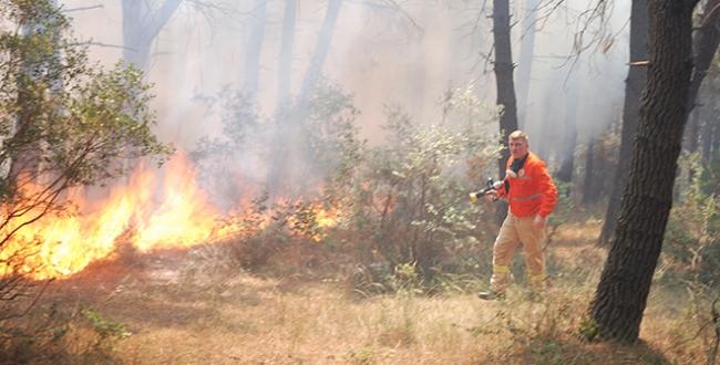 Çöpleri tutuşturdu ormanı yaktı