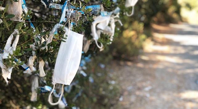 Büyükada'da tepki geçen görüntü: Ağaçlara maske taktılar