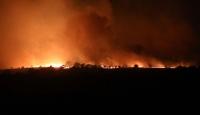 Bulgaristan'daki yangın Türkiye sınırına yaklaştı