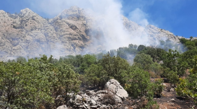 Adıyamanda ormanlık alanda yangın